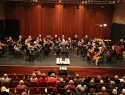 Kamerorkest Divertimento